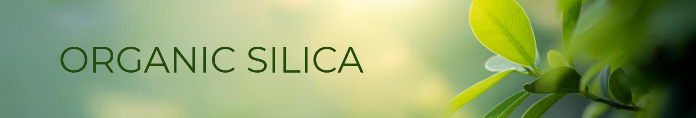 Organic Silica