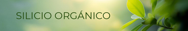 Silicio Orgánico