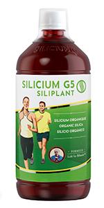 G5 Silicium Siliplant